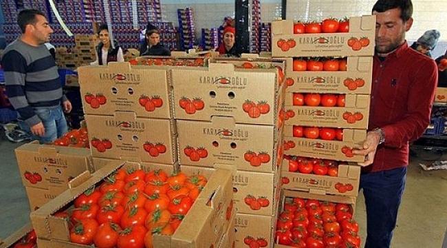 Rusya kapıları Türk ürünleri için 1 Ocak'a kadar açık