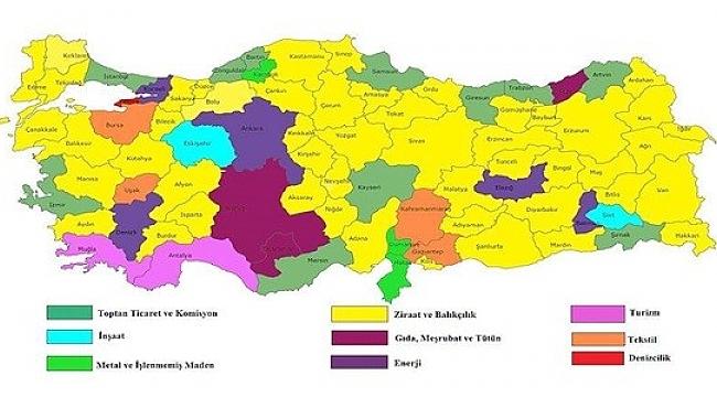 Türkiye'nin sektörel kredi haritası