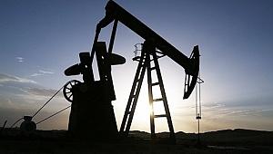 OPEC küresel petrol talebi tahminini düşürdü